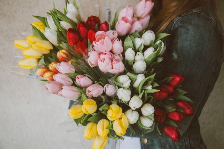 alisa-anton-il-coccio-fiorito